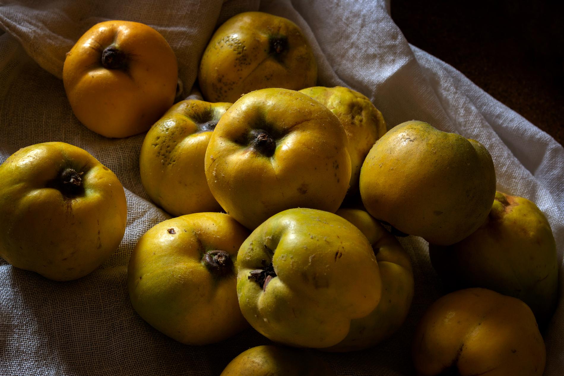 Apfelquitten auf einem Haufen