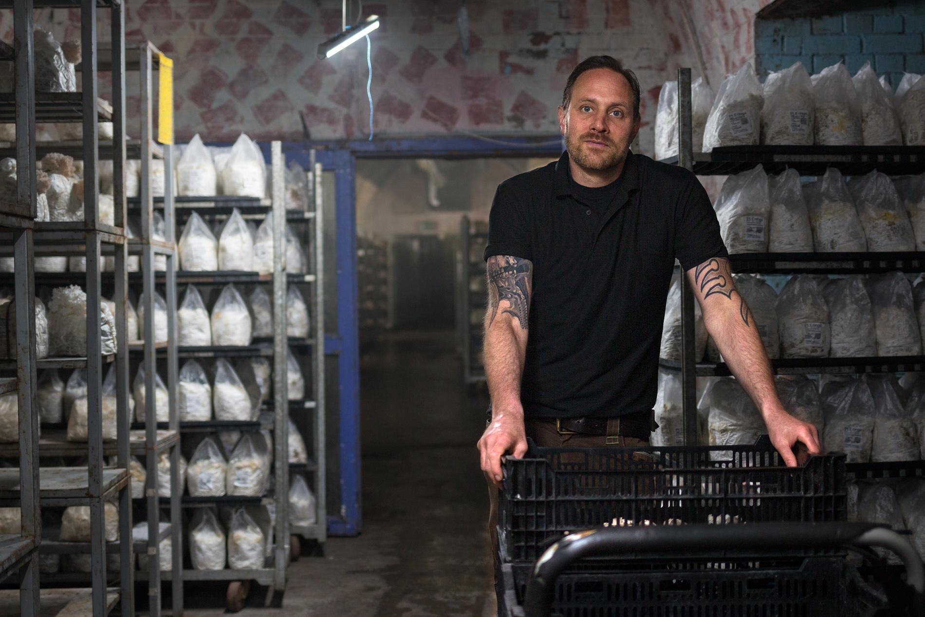 Pilzzucht Mathias Kroll